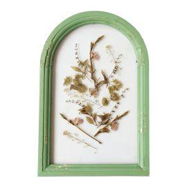 Cadre vert ovale fleurs séchées
