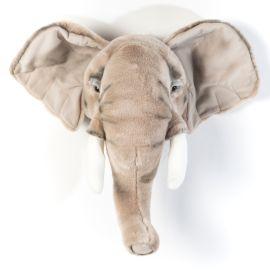 trophee-elephant-wild-soft